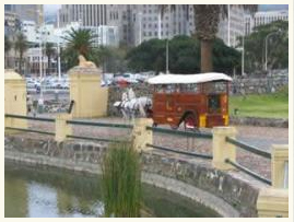 Carriage_Tours_4b29f439a007d