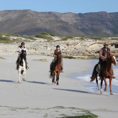 Horseback riding on the beach at De Kelders