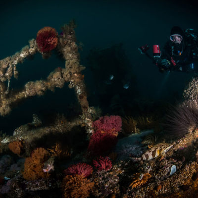Wreck scuba diving Cape Town